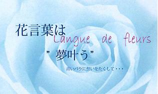 花言葉(blue)