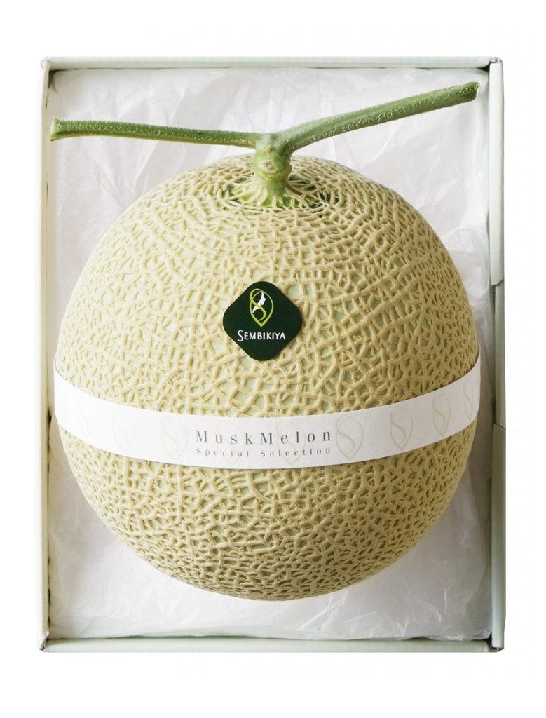melon_re