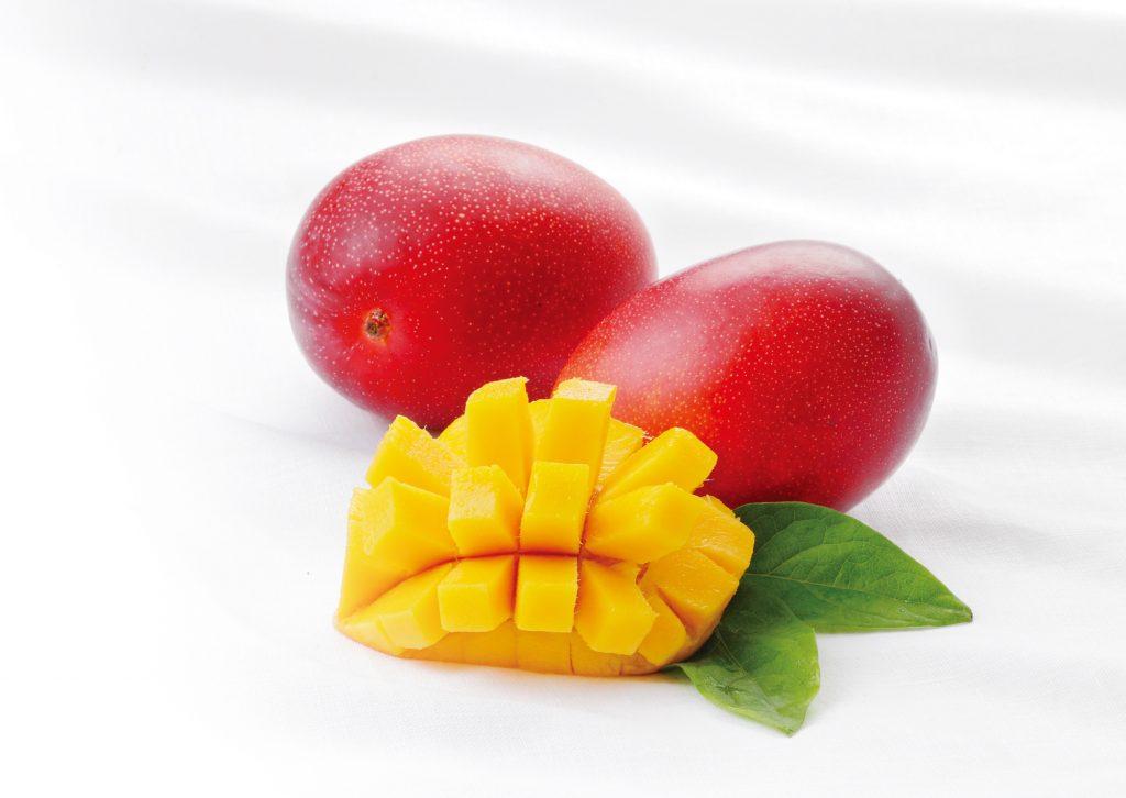 宮崎県産 完熟マンゴー特別提供品