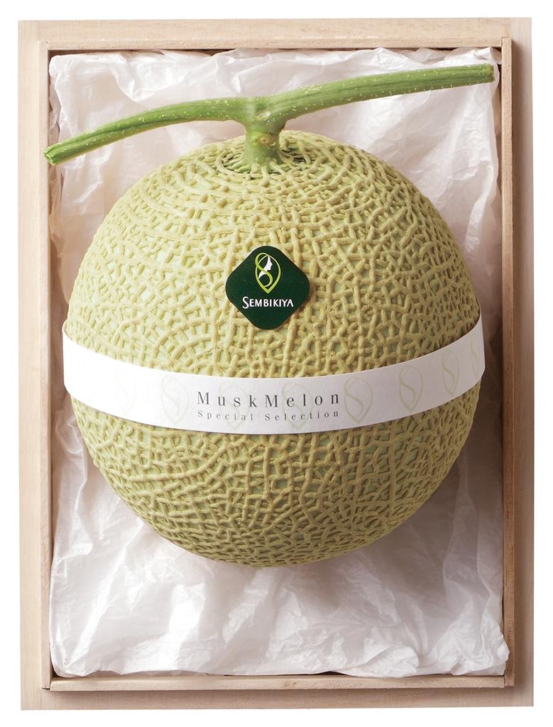 melon_1WB
