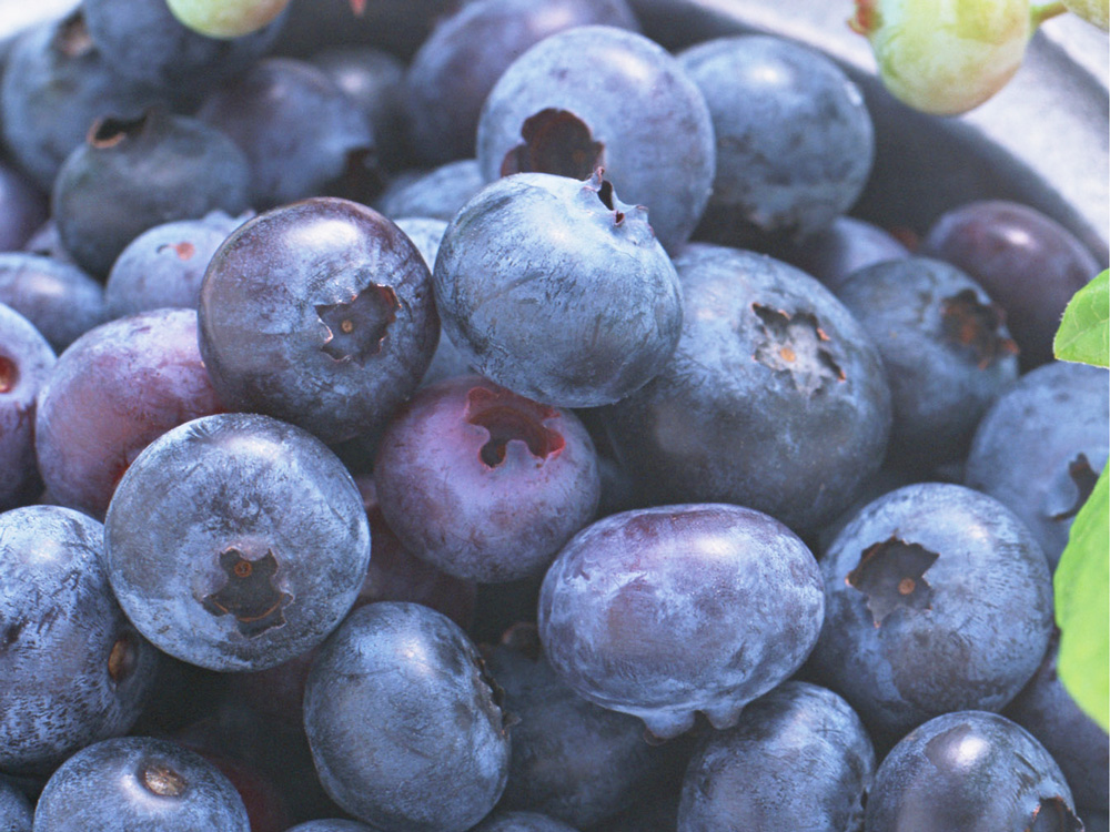 juice_blueberryyogurt