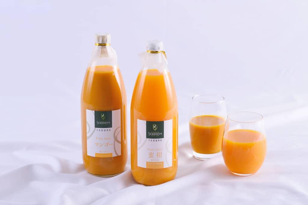 fruitjuice100_image